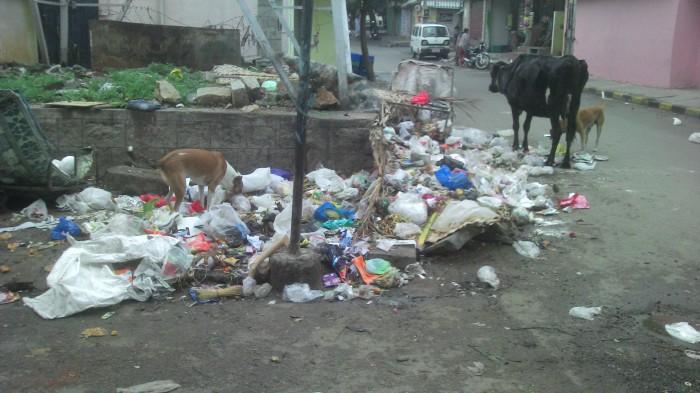 The blackspot on 5th main Meenakshi nagar in its original splendor with over 85 households dumping here